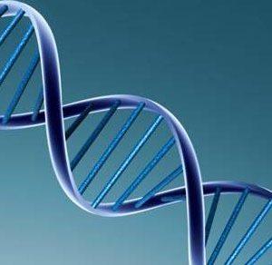Teste de perfil genético no SUS