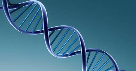 perfil-genetico